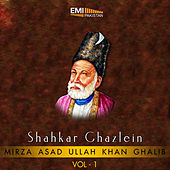 Shahkar Ghazlein, Vol. 1 by Various Artists