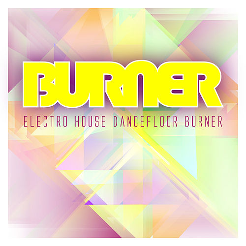 Electro House Dancefloor Burner by Various Artists