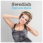 Swedish Bigroom Mafia by Various Artists