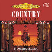 Country Album by Various Artists