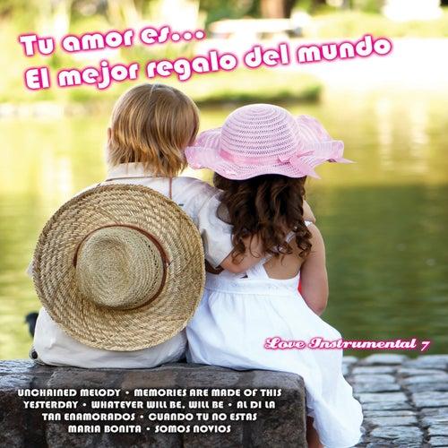Tu Amor Es... El Mejor Regalo del Mundo: Love Instrumental, Vol. 7 by Various Artists