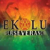Perseverance by Ekolu