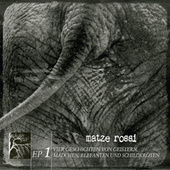 Vier Geschichten von Geistern, Mädchen, Elefanten und Schildkröten by Senore Matze Rossi
