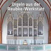 Orgeln aus der Reubke-Werkstatt (Eine Klangdokumentation mit Ulrike Kern und Michael Schulze) by Various Artists