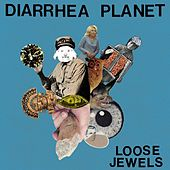 Loose Jewels by Diarrhea Planet