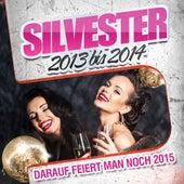 Silvester 2013 bis 2014 - Darauf feiert man noch 2015 by Various Artists