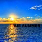 True Summer by Various Artists
