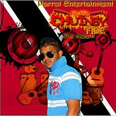 Chutney Fire by Various Artists