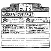 Chalk Tape by Screaming Females