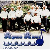Flor del Rio by Conjunto Agua Azul (1)