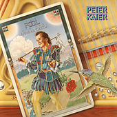 The Fool And The Hummingbird by Peter Kater