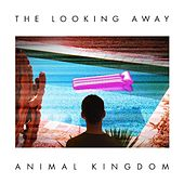 The Looking Away by Animal Kingdom
