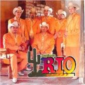 Tu, El y Yo by Conjunto Rio Grande