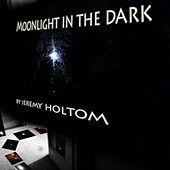 Moonlight In The Dark by Jeremy Holtom