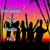 Disfrutando la Musica, Vol. 5 by Various Artists