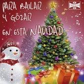 Para Bailar y Gozar en Esta Navidad by Various Artists