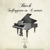 Bach: Solfeggietto in C Minor by Alessandro de Lucci