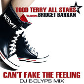 Can't Fake the Feeling (Dj E-Clyps MIX) by Todd Terry