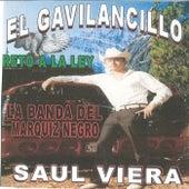 Reto a la Ley by Saul Viera el Gavilancillo