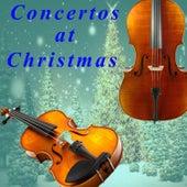 Tommaso Albinoni: Concertos at Christmas von Trevor Pinnock