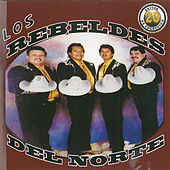 20 Exitos de Coleccion by Los Rebeldes Del Norte