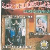 20 Exitos de Coleccion Lo Mejor de Lenis Beatriz by Los Terricolas