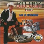 20 Exitos de Coleccion las 12 Ectareas by Saul Viera el Gavilancillo