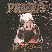 Pork Soda by Primus
