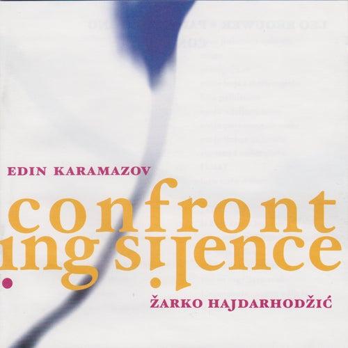 Confronting Silence by Zarko Hajdarhodzic
