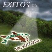 Exitos de La Nobleza de Aguililla by La Nobleza De Aguililla