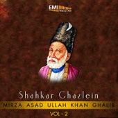 Shahkar Ghazlein, Vol. 2 by Various Artists