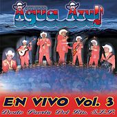 En Vivo, Vol. 3 by Conjunto Agua Azul (1)