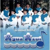 El Perro Negro by Conjunto Agua Azul (1)