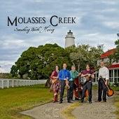Something Worth Having by Molasses Creek