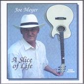 A Slice of Life by Joe Meyer
