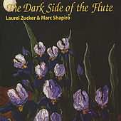 The Dark Side of the Flute by Various Artists