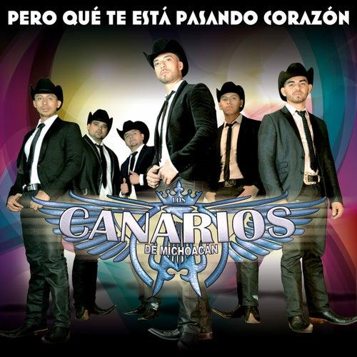 Pero Qué Te Está Pasando Corazón by Los Canarios De Michoacán