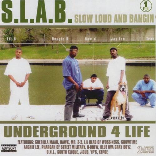 Vol. 1 by S.L.A.B.