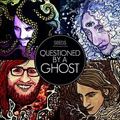 Questioned by a Ghost von The Seeds