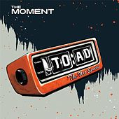 The Moment (Radio Edit) by Toad the Wet Sprocket