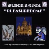 Pleasuredome by Black Angel
