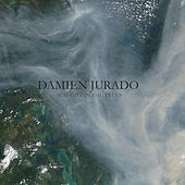 Caught In The Trees by Damien Jurado