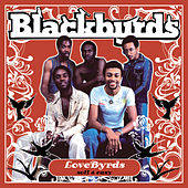 Lovebyrds (Smooth And Easy) by The Blackbyrds