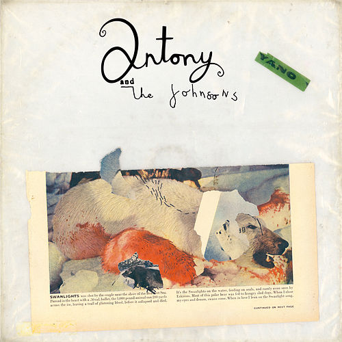 Swanlights by Antony and the Johnsons