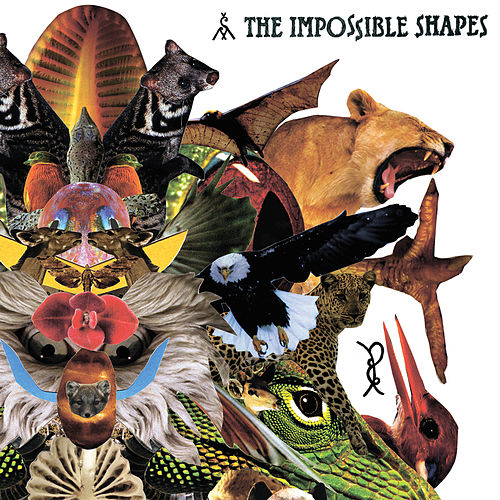 The Impossible Shapes by The Impossible Shapes