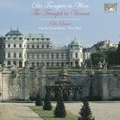 The Trumpet in Vienna by Otto Sauter, Franz Wagnermeyer, Cappella Istropolitana