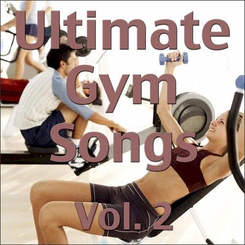 Ultimate Gym Songs Vol. 2 by Wildlife