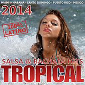 Tropical 2014 - Salsa & Bachata Hits 2014 by Various Artists
