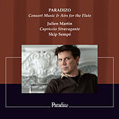 Paradizo, Consort Music & Airs for the Flute by Various Artists