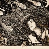 Days of the Fallen Sun by Junius